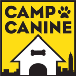 camp-canine